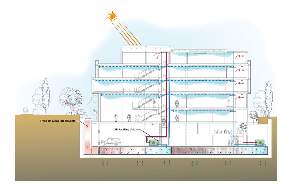 Avciarchitects TMB Office Design